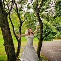 cromatica la nunta