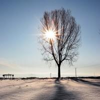 fotografie de iarna in Suceava