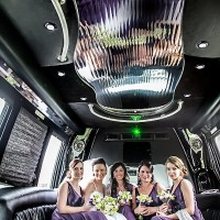 petrecere in limuzina la nunta