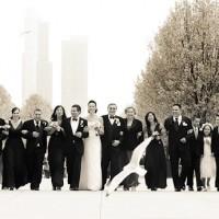 petrecere la nunta