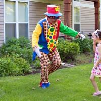 Clown in vizita